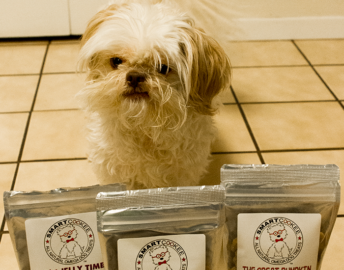 SMARTCOOKEE!! Happy National Dog Biscuit Day