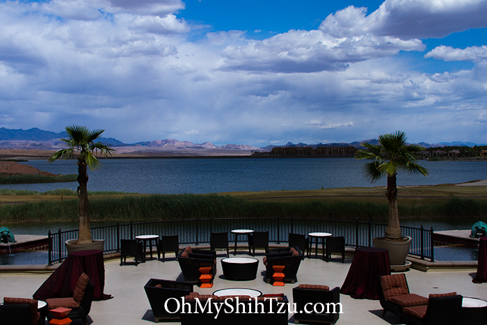 Westin Lake Las Vegas Terrace