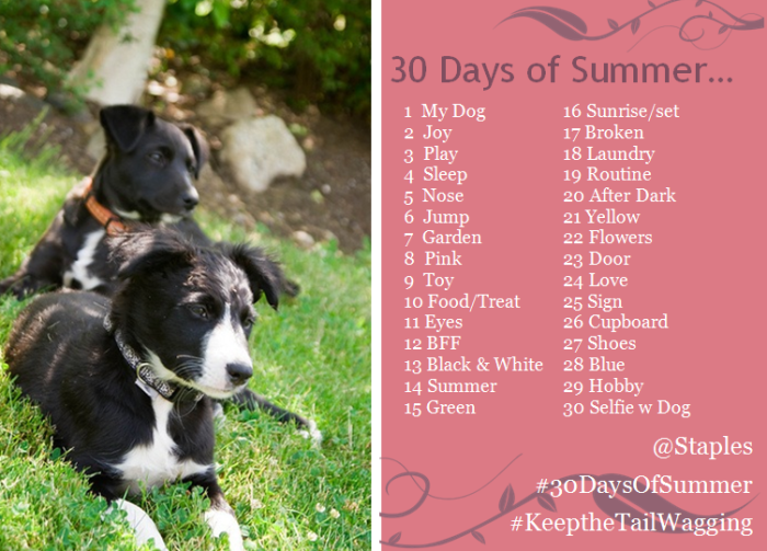 #30daysofSummer photo challenges requirement
