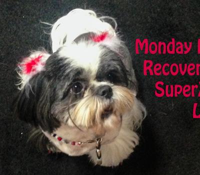 Monday Mischief: SuperZoo 2014 Recap