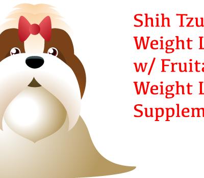 Shih Tzu Weight Loss: Fruitables Weight Loss Supplement
