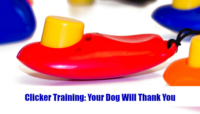 Clicker Training – Your Dog Will Thank You