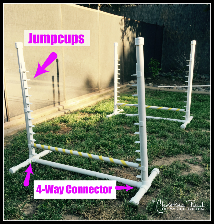 Backyard Agility Equipment