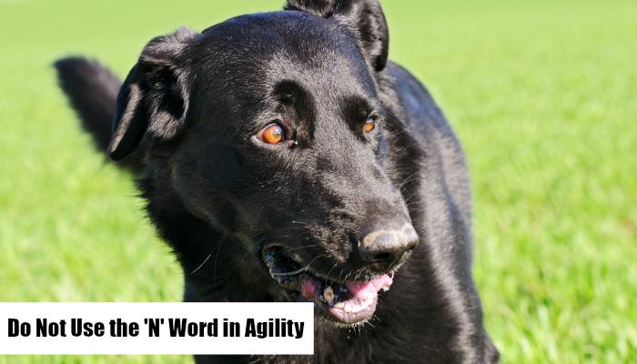 'N' word , Agility Training