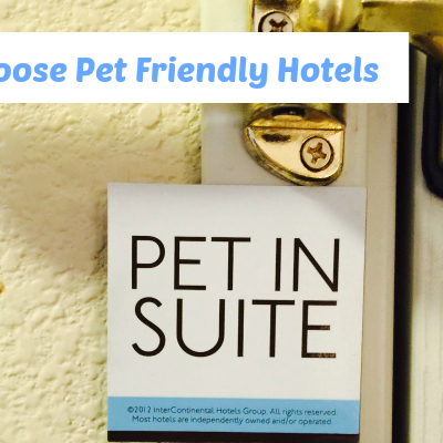Traveling to Blogpaws – Why I Choose Pet Friendly Hotels