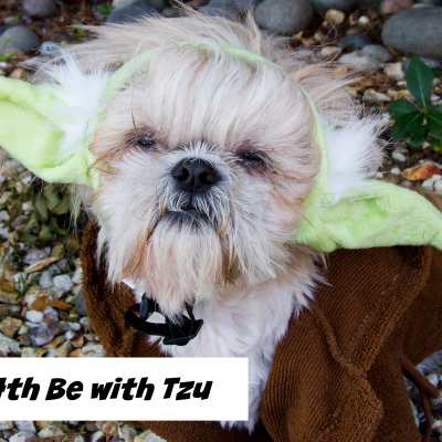 May the 4th Be With Tzu #StarWarsDay