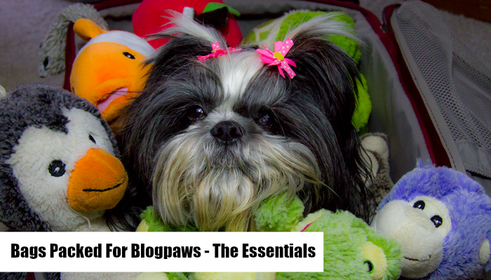 Traveling Shih Tzu… Are Your Suitcases Packed for Blogpaws?