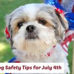 Dog Safety July 4th