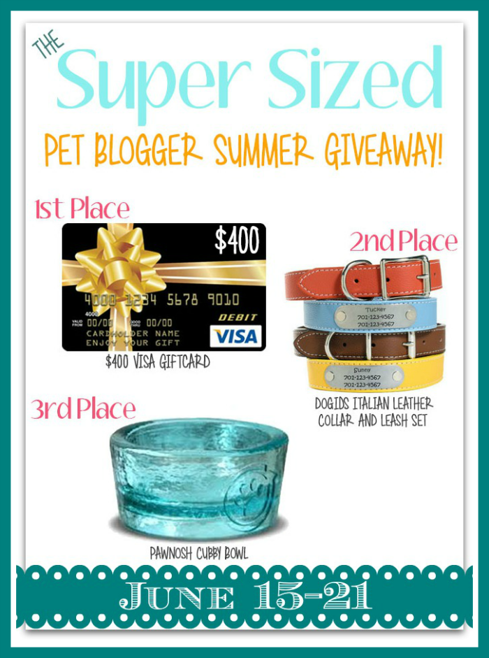 Pet Blogger Giveaway