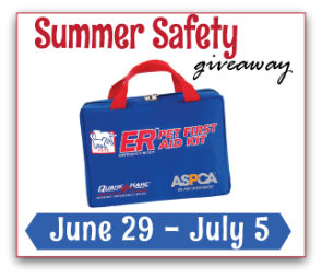 Summer Safety Giveaway Picture