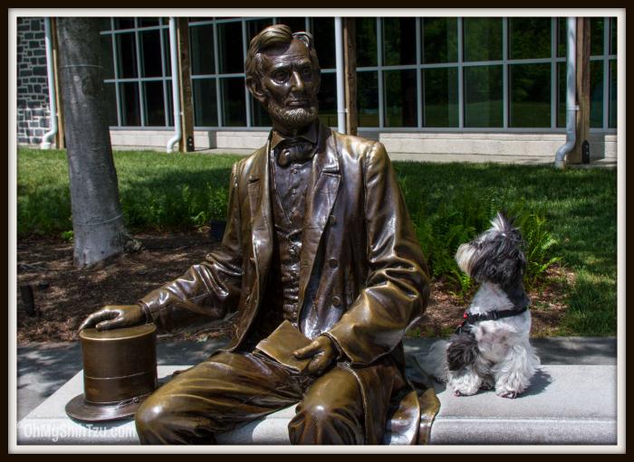 Shih Tzu Travel Gettysburg with RIley