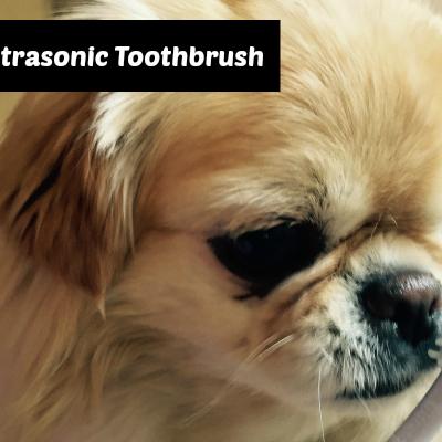 Emmi-Pet Ultrasonic Dog Toothbrush & Giveaway!