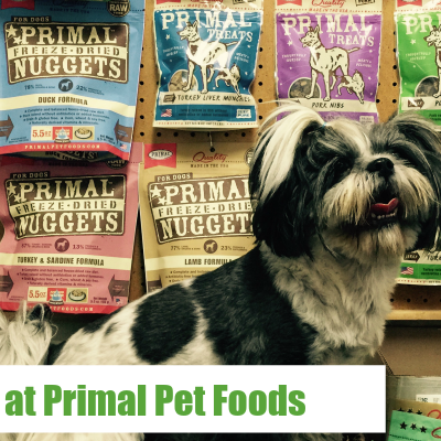 A Day at Primal Pet Foods
