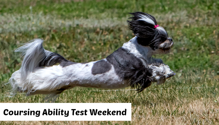 Coursing Ability Test