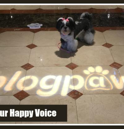 Using Your Happy Voice