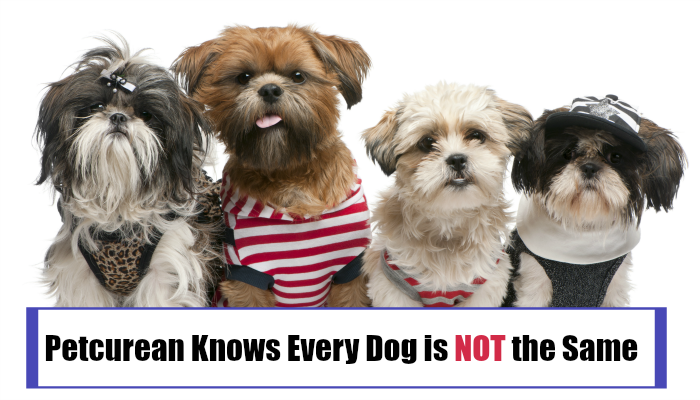 Petcurean Knows Every Dog is NOT the Same