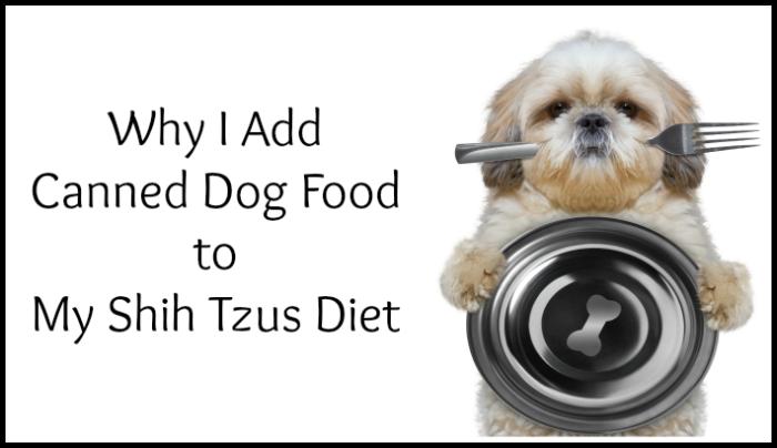 Canned Dog Food, Shih Tzu holding bowl