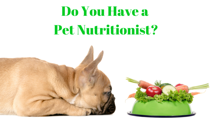 Meet the Pet Nutritionist