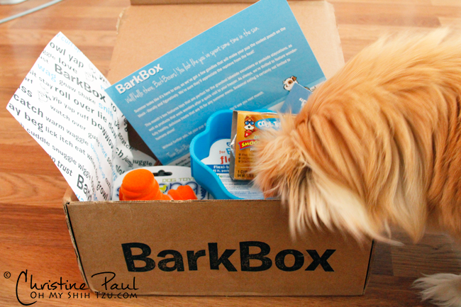 Barkbox-July_1