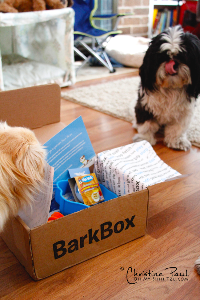 Barkbox-July_3