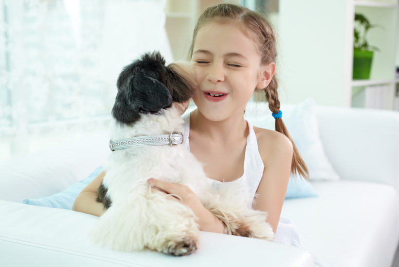 When a Pet Dies – What to Tell Your Child