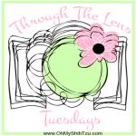 Through the Lens Tuesdays Logo