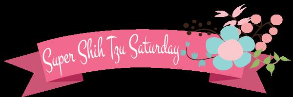 Super Shih Tzu Saturday Logo