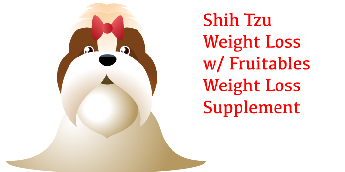 Shih Tzu Weight Loss