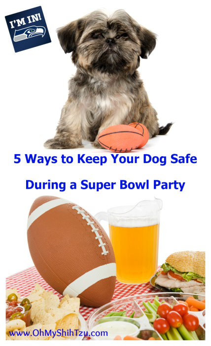 keep your dogs safe during a super bowl party