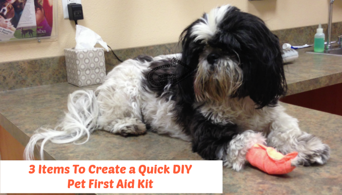 Pet First Aid Kit Featured Image
