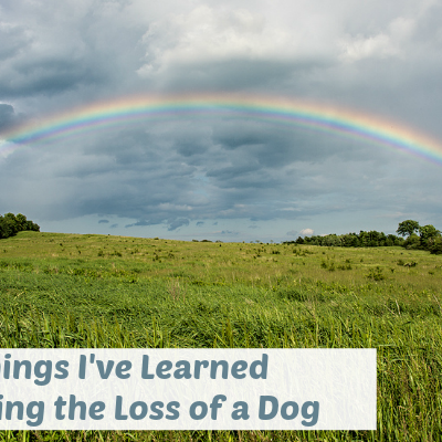 3 Things I've Learned Mourning the Loss of a Dog