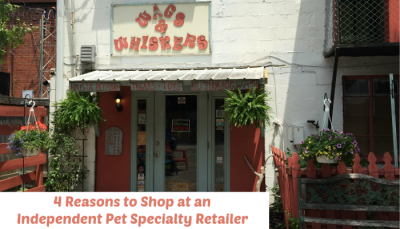 Pet Specialty Retailer Featured Image
