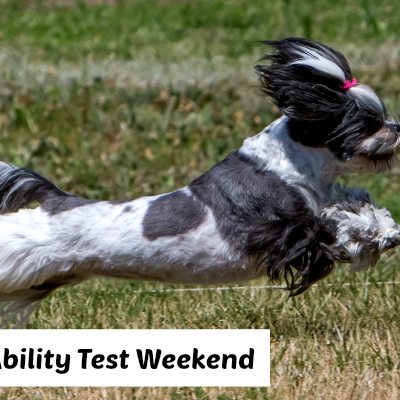 Coursing Ability Test Weekend