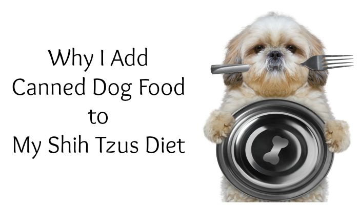 Why I Add Canned Dog Food  #PetcureanLove