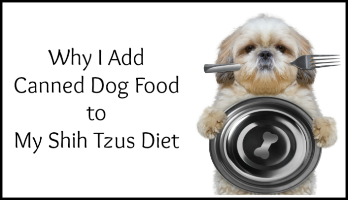 Canned Dog Food, Shih Tzu holding bowl